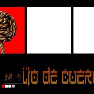 LIO DE CUERDAS
